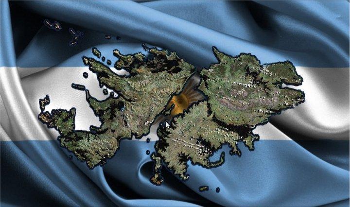 Causas De La Guerra De Malvinas 1982